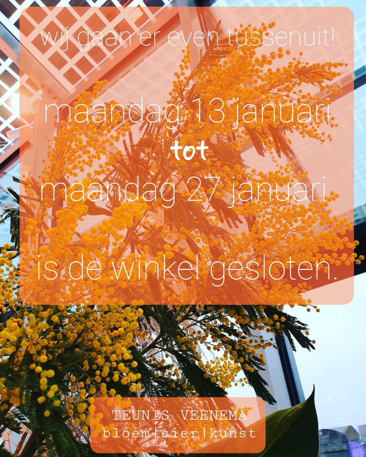 whatsapp-image-2020-01-11-at-14.19.52